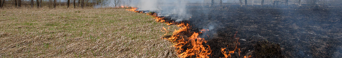 Insurance & Other Litigation: Grass Fires & Explosions