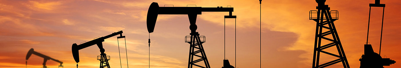 Oil, Gas, and Mineral Rights Litigation
