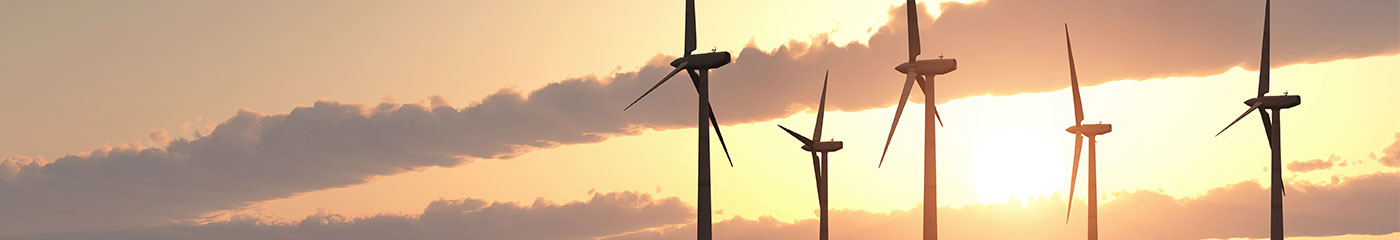 Environmental & Renewable Energy